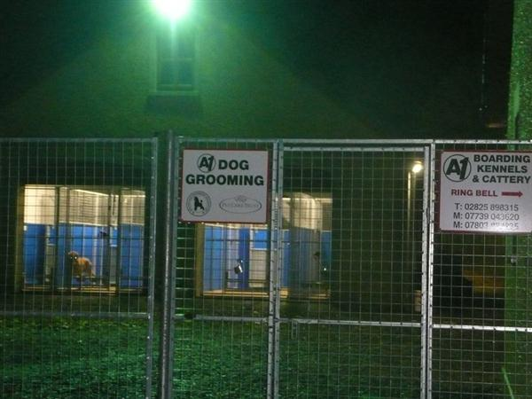 Night time At A1 Boarding Kennels